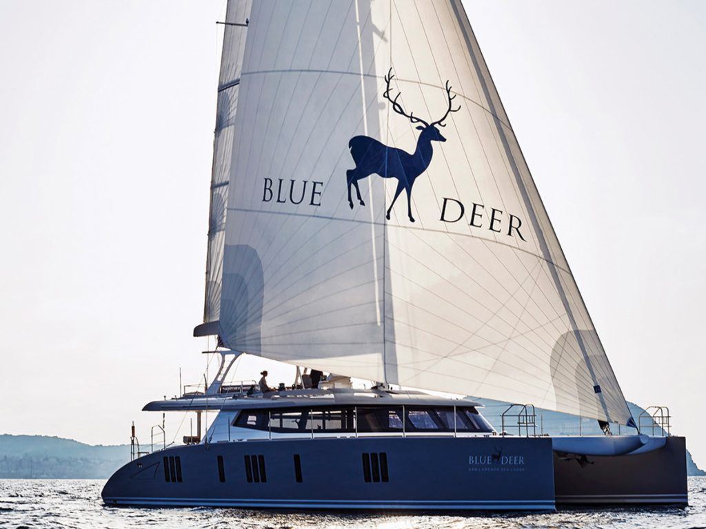 blue deer42