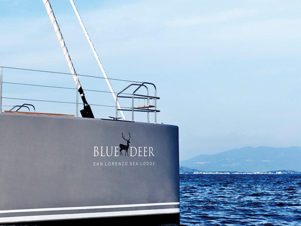 blue deer47